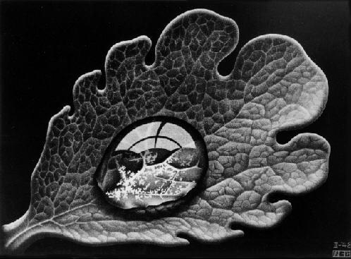 Росинка. 1948, меццо-тинто