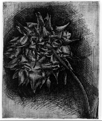 Цветок. 1920, травление