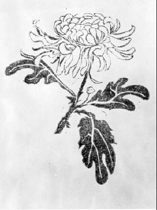 Хризантема. 1916, гравюра на зеленом линолеуме